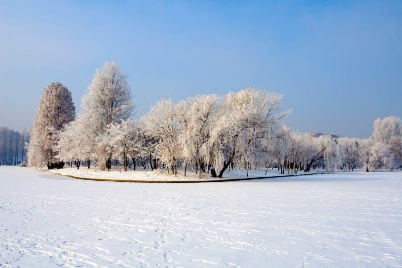 krajobrazowy śnieg fotografia stock