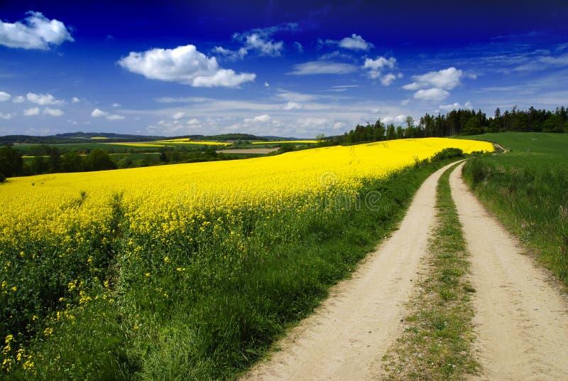 krajobrazowy drogowy wiejski obrazy stock