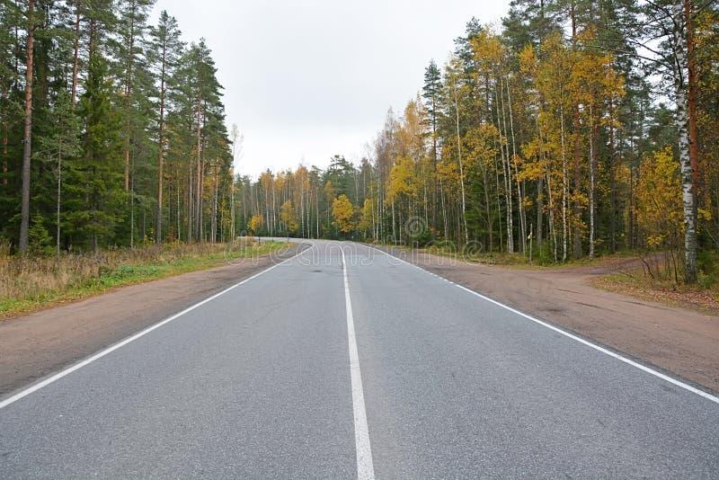 krajobrazowy jesień ranek Russia ural obrazy royalty free
