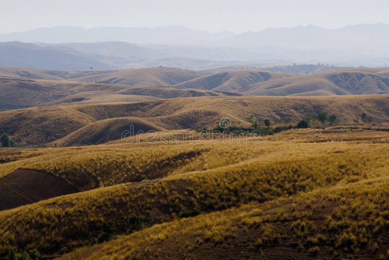 krajobrazowy Madagascar obrazy royalty free