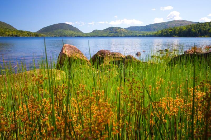 krajobrazowy Maine zdjęcia stock