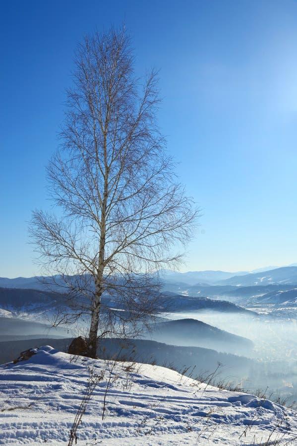 krajobrazowy montane fotografia royalty free