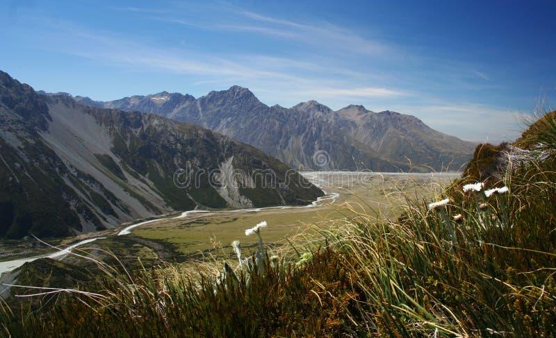 krajobrazowy nowy Zealand obrazy stock