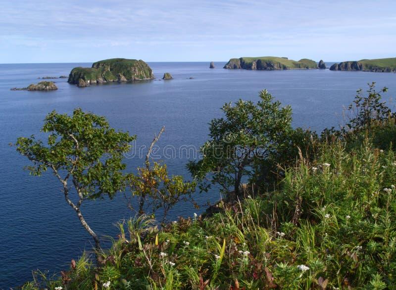 krajobrazowy oceaniczny zdjęcia stock