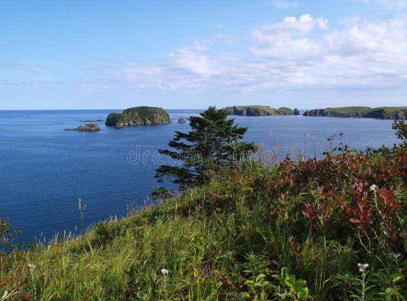 krajobrazowy oceaniczny obraz stock