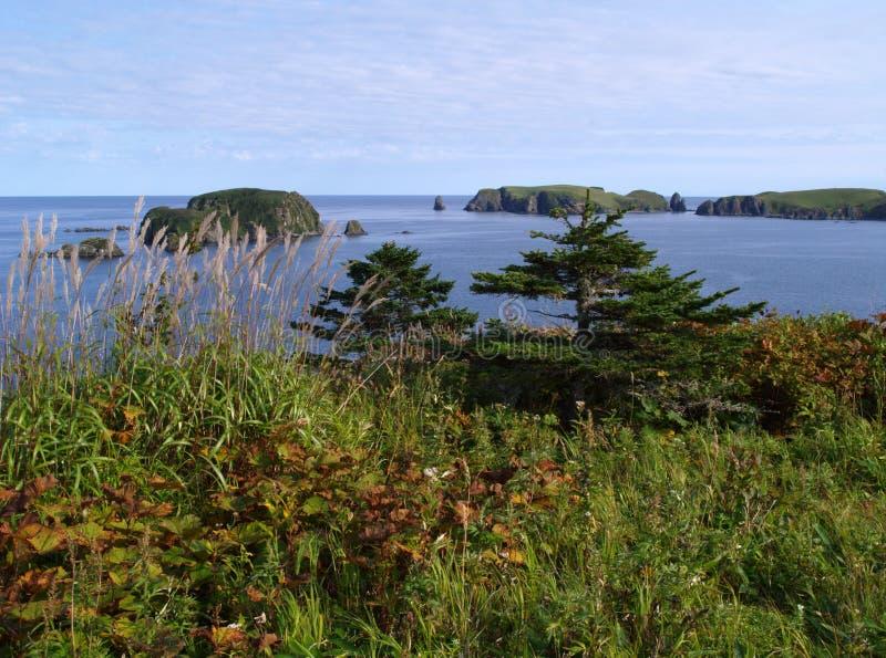 krajobrazowy oceaniczny fotografia stock