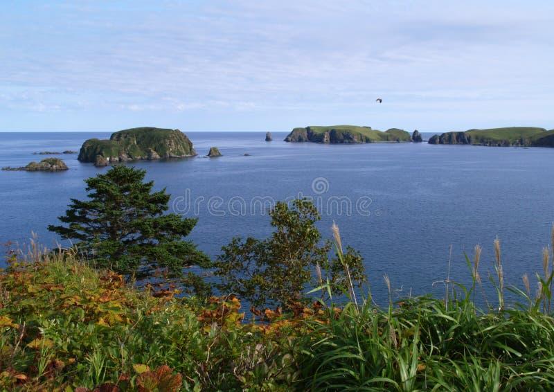 krajobrazowy oceaniczny obrazy royalty free