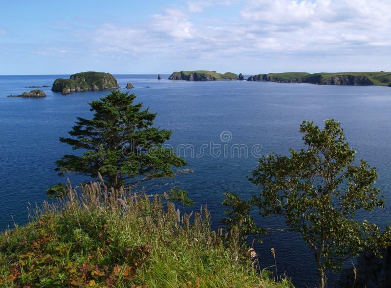 krajobrazowy oceaniczny zdjęcie royalty free