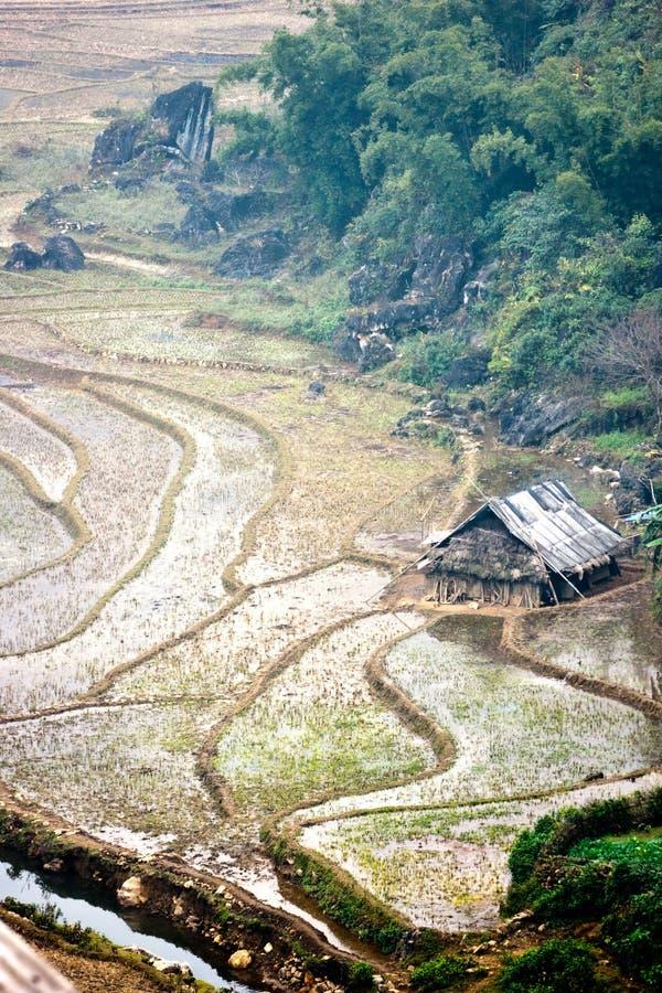 krajobrazowy północny wietnamczyk zdjęcia royalty free