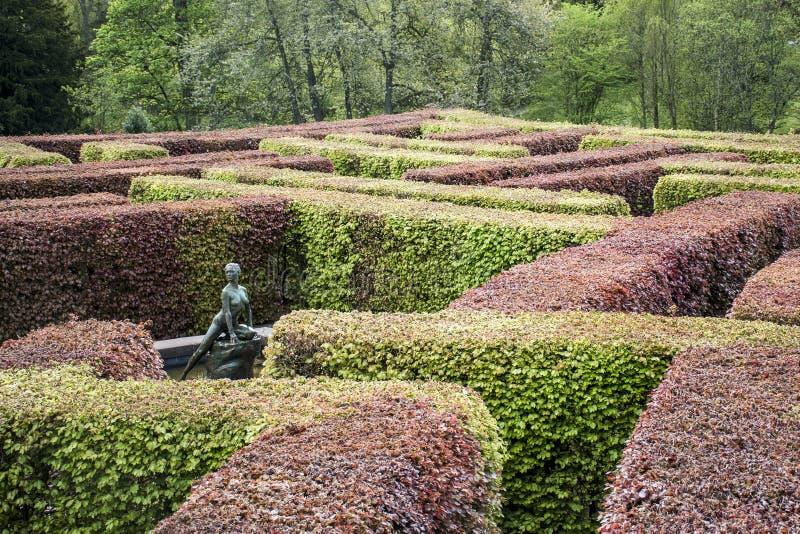 Krajobrazowy Parkowy Lasowy Szkocja Brytania Scone Wielki pałac 4 fotografia stock
