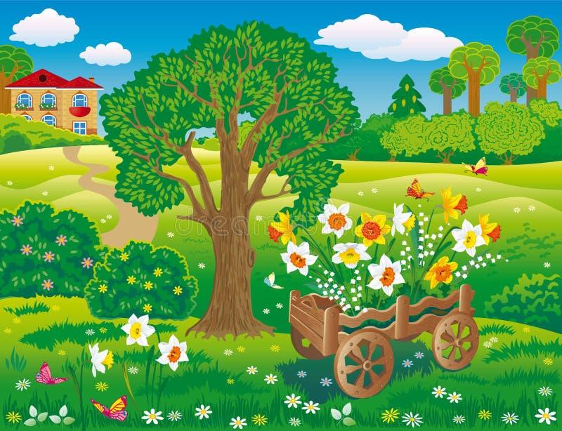 Krajobrazowy projekt z dekoracyjną furą z daffodils kwitnie ilustracja wektor