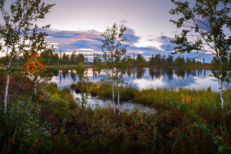 Krajobrazowy przyroda zmierzchu wschód słońca na dzikim jeziorze pustkowie ziemia zdjęcia royalty free