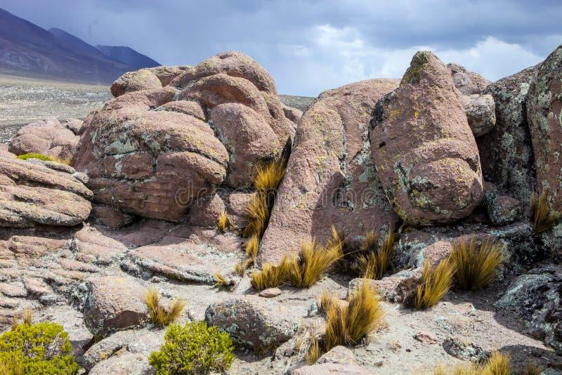 Krajobrazowy Reserva Nacional Salinas y Aguada Blanca, Peru fotografia stock