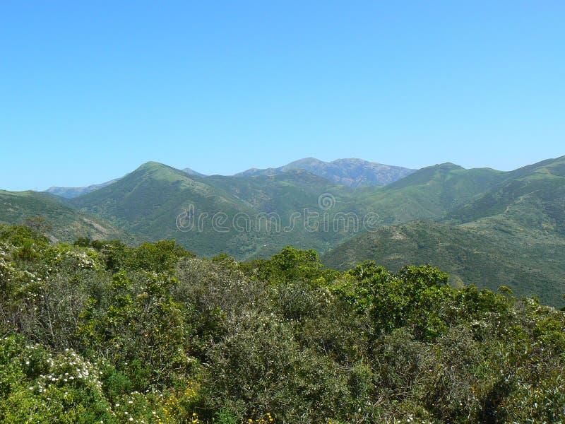 krajobrazowy Sardinia obrazy royalty free