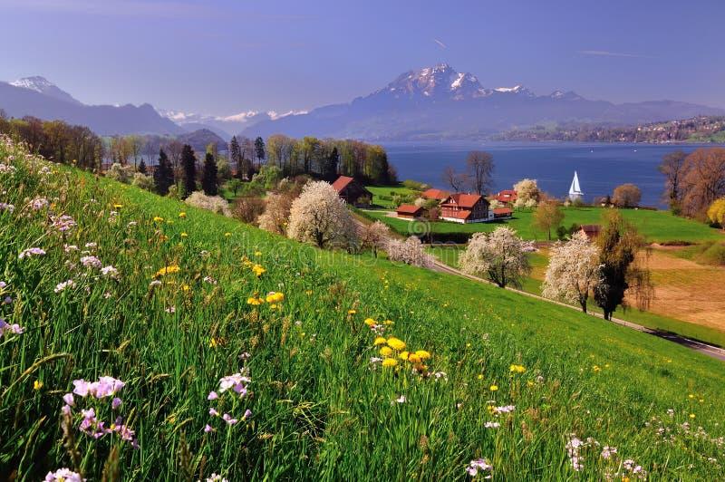 krajobrazowy Switzerland zdjęcie stock