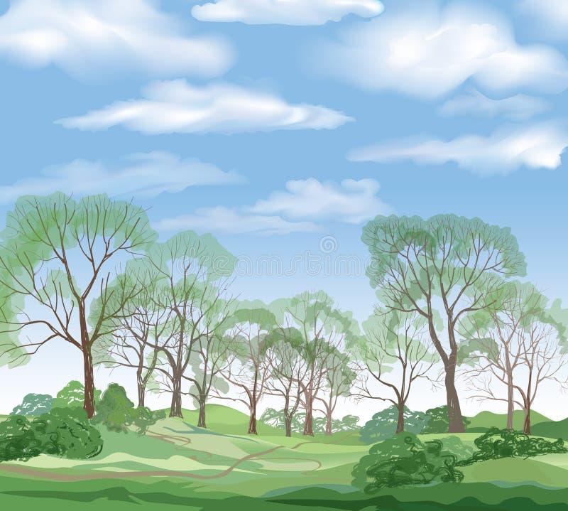 Krajobrazowy tło, lato zielony las i niebieskie niebo z clou, royalty ilustracja