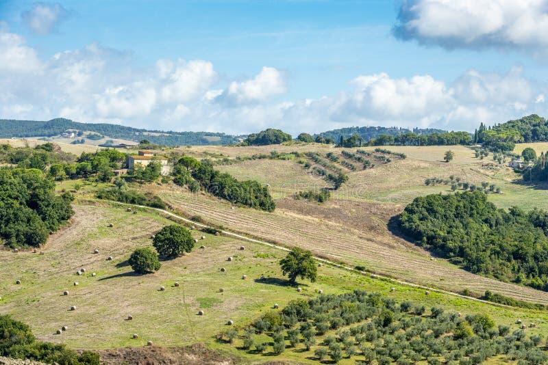 Krajobrazowy Tuscany blisko Volterra obrazy royalty free