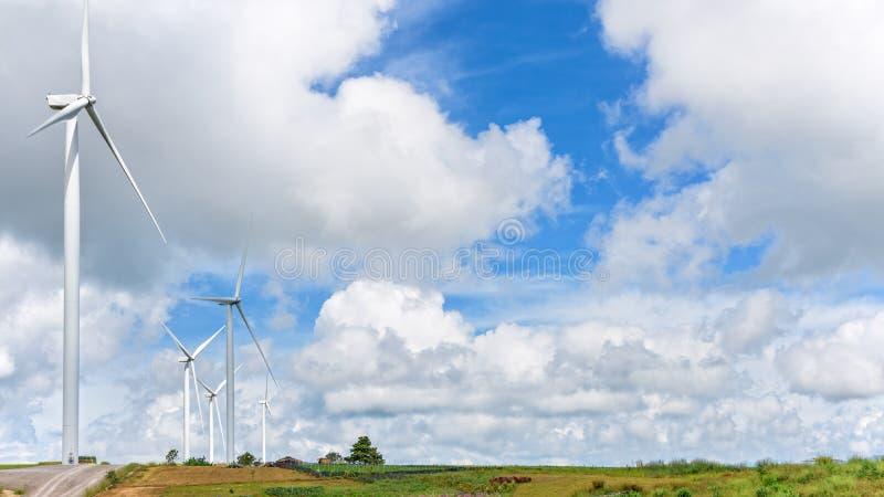 Krajobrazowy wiatraczka pole zdjęcie stock
