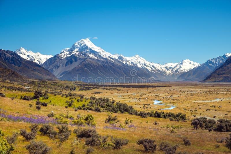 Krajobrazowy widok łąki i Mt Kucbarski pasmo górskie, NZ obraz royalty free