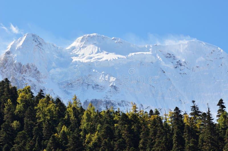 Krajobrazowy widok śnieżny halny szczyt z chmury i niebieskiego nieba tłem przy Yading Krajową rezerwą, Sichuan, Chiny zdjęcie stock