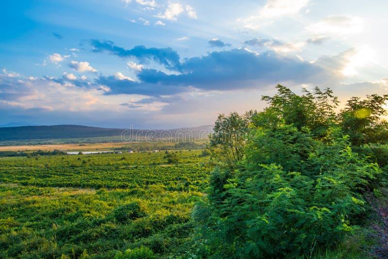 Krajobrazowy widok Bałkańskie góry w Bułgaria z zielonymi krzakami zdjęcie stock