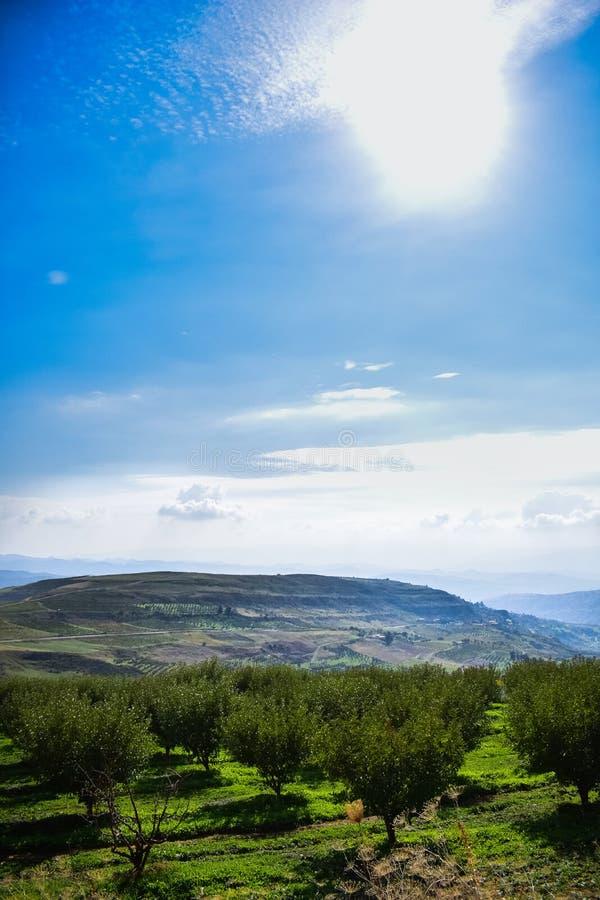 Krajobrazowy widok benchikao góra, medea, Algeria przy 2018 Października słonecznym dniem zdjęcie stock