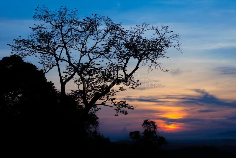 Krajobrazowy widok i sylwetka drzewo, Tajlandia fotografia stock