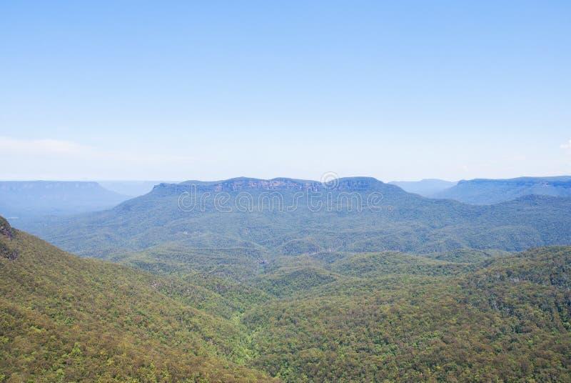 Krajobrazowy widok kangur dolina obraz royalty free