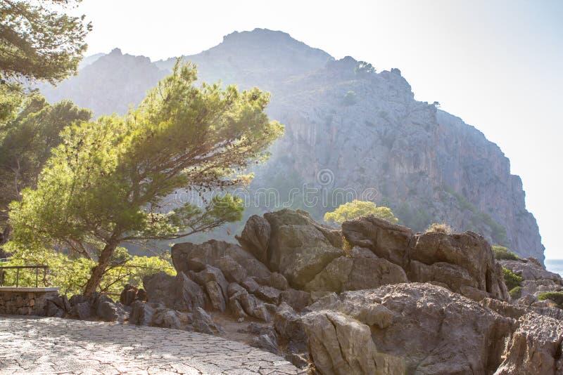 Krajobrazowy widok sposób port Sa Calobra na Mallorca, Sp obraz royalty free