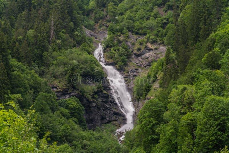 Krajobrazowy widok wysoka malownicza siklawa w bujny zieleni lasu krajobrazie obraz royalty free