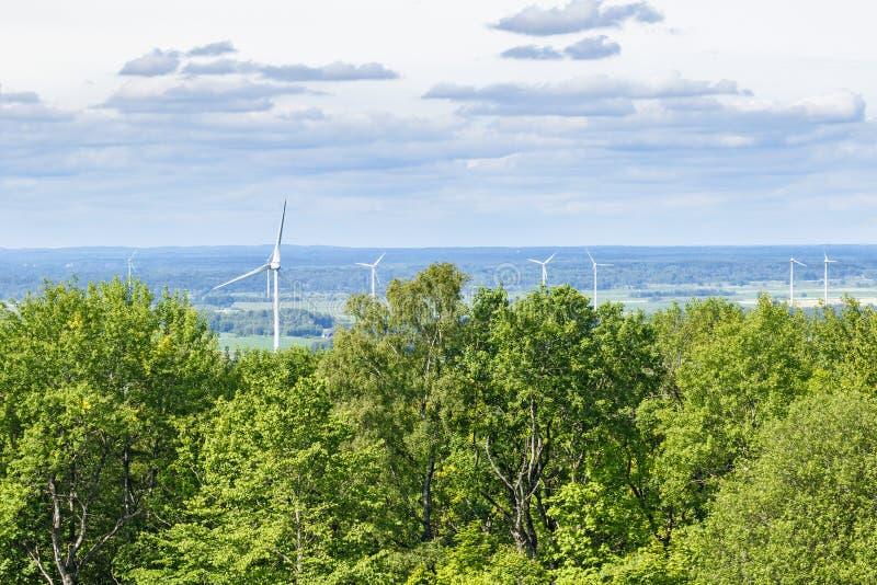 Krajobrazowy widok z wiatrowym gospodarstwem rolnym i lasem obrazy royalty free