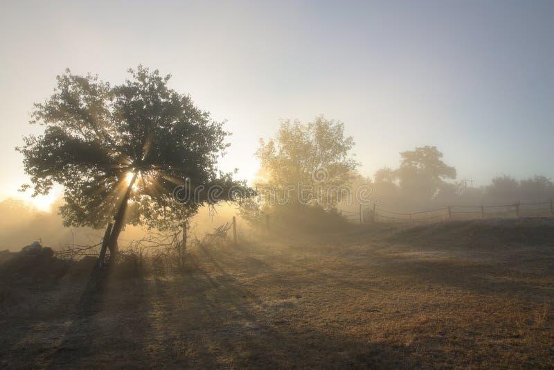 krajobrazowy wiejski zdjęcia royalty free