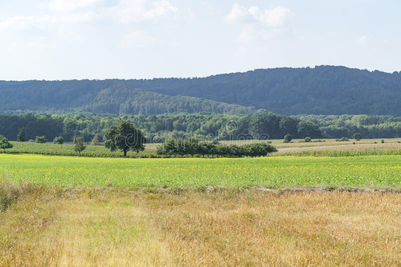 krajobrazowy wiejski pogodny zdjęcia royalty free