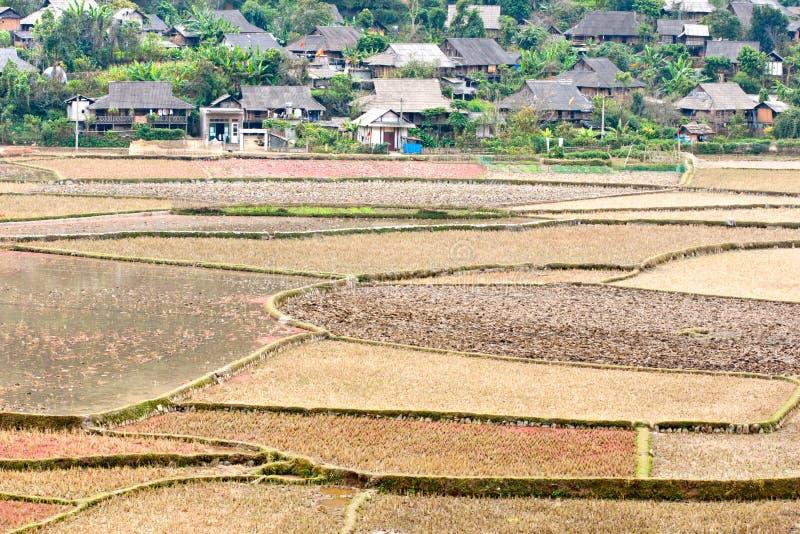 krajobrazowy wietnamczyk zdjęcie royalty free