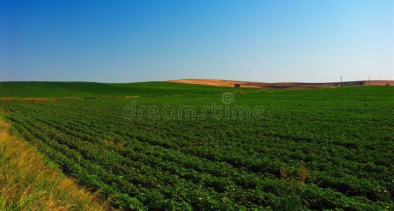 krajobrazu zdjęcie stock