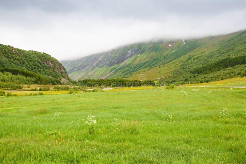 krajobrazu Norway obrazy stock