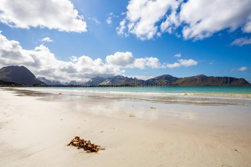 krajobrazu Norway obraz stock