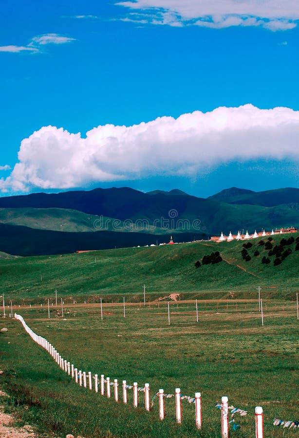 krajobrazu paśnik zdjęcie royalty free