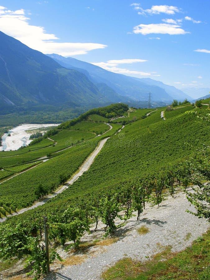 Download Krajobrazu wiejskiego zdjęcie stock. Obraz złożonej z góra - 41955602
