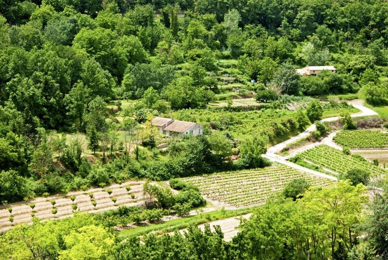 Download Krajobrazu wiejskiego obraz stock. Obraz złożonej z natura - 41955703