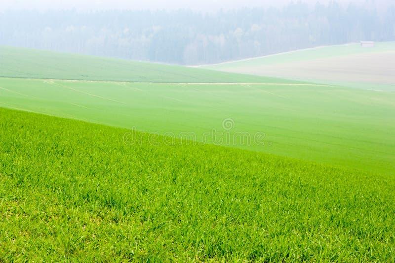 krajobrazu wiejskiego obraz stock