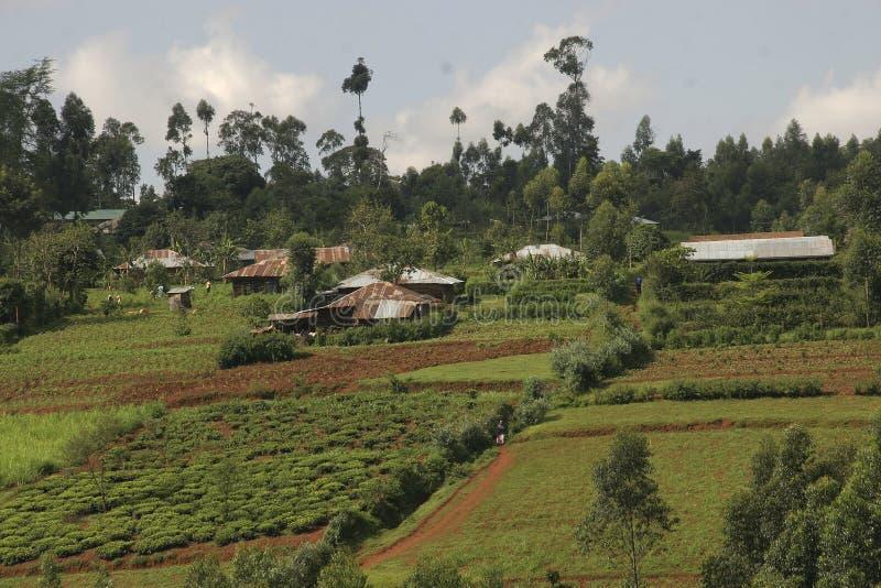 krajobrazu wiejskiego afryki zdjęcie royalty free