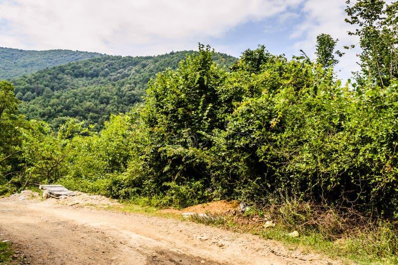krajobrazu wiejskiego obszarów wiejskich zdjęcia stock