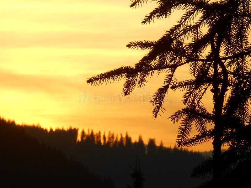 Krajobrazy w Rumunia, lecie i zimie, zdjęcie royalty free