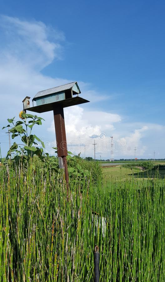 Kraju birdhouse fotografia stock