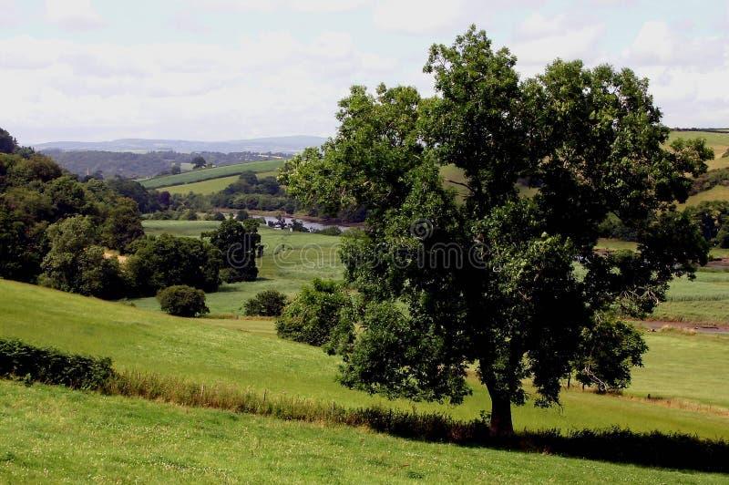 kraju Devon England scena fotografia stock