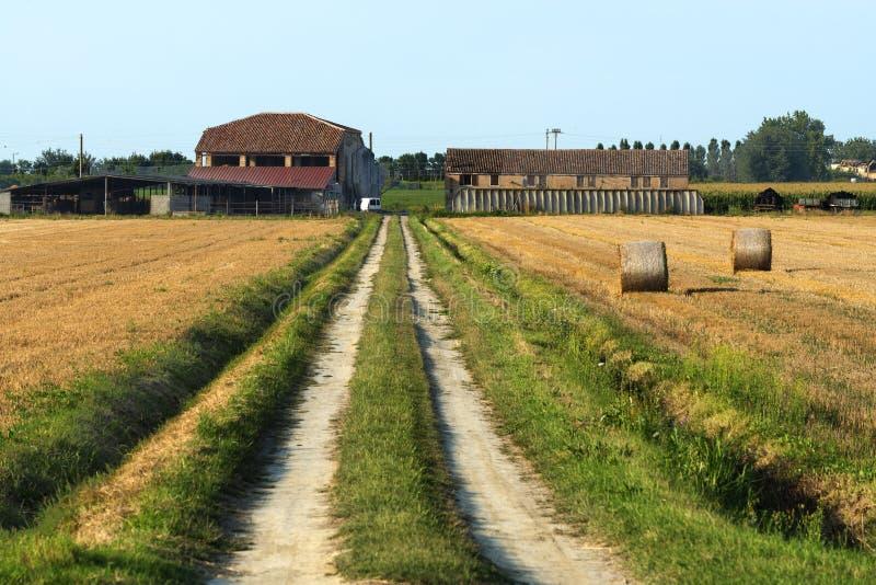 Kraju krajobraz blisko Ferrara (Włochy) obrazy royalty free