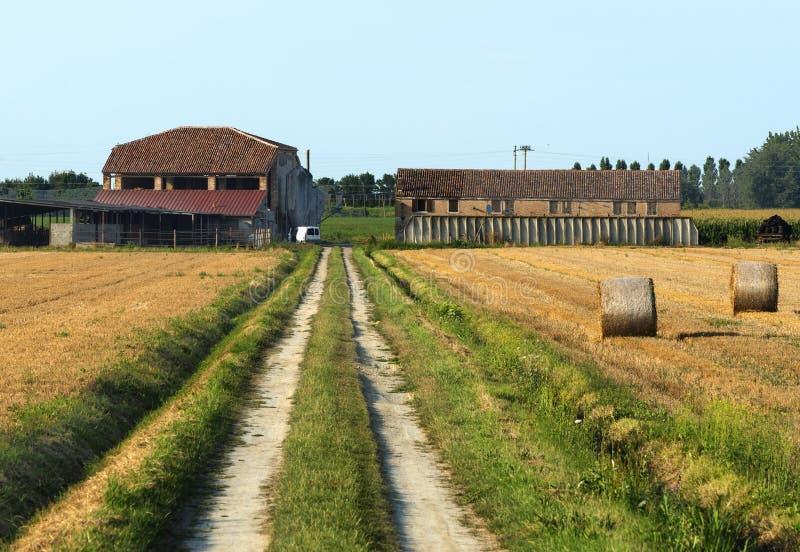 Kraju krajobraz blisko Ferrara (Włochy) zdjęcie stock