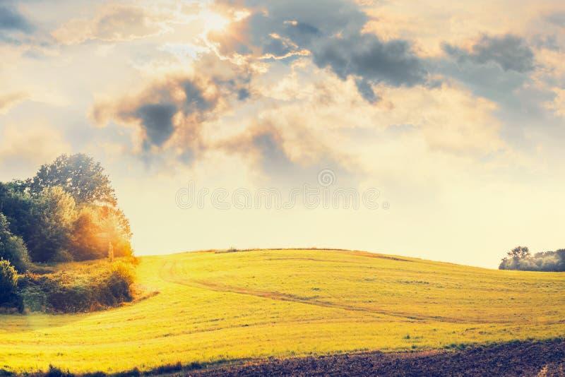 Kraju krajobraz z wzgórzami, polem, drzewami i pięknym niebem, fotografia stock