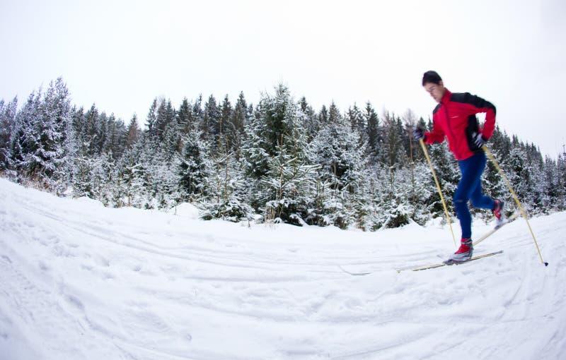 kraju krzyża mężczyzna narciarstwa potomstwa zdjęcia royalty free